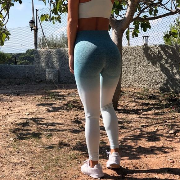 8171e2873e731a Ali Express Pants - Ombre Seamless Leggings Deep Teal ALIEXPRESS DUPE